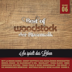 Best Woodstock der Blasmusik - Vol. 6 2er-CD